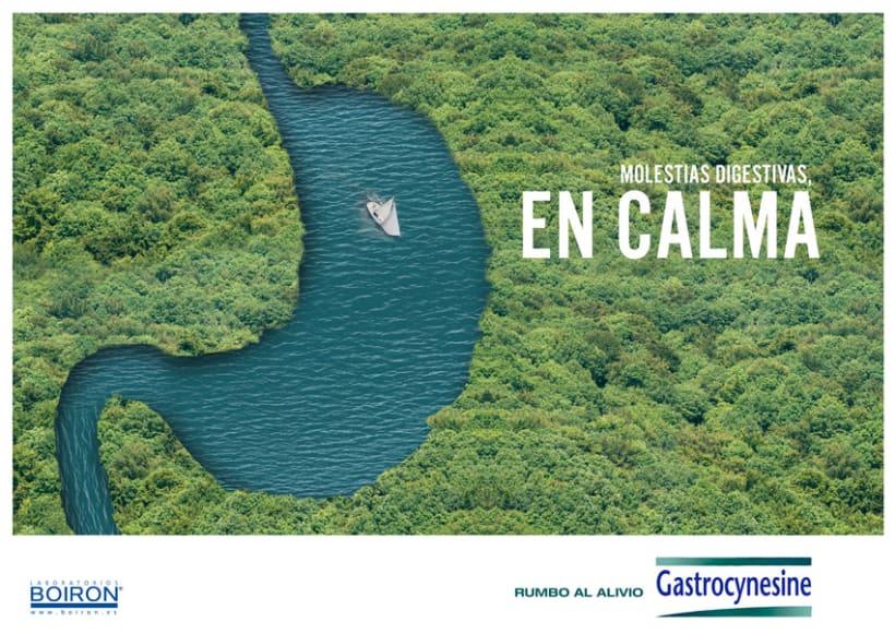 Campaña Gastrocynesine 2