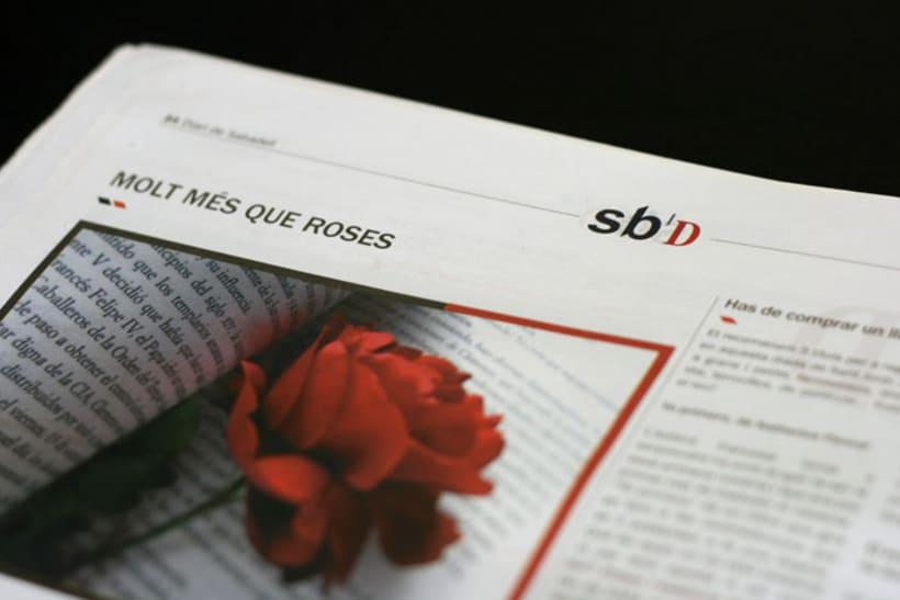 Monográficos para Diari Sabadell 2