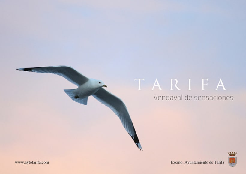 Propuesta imagen promocional Tarifa 4
