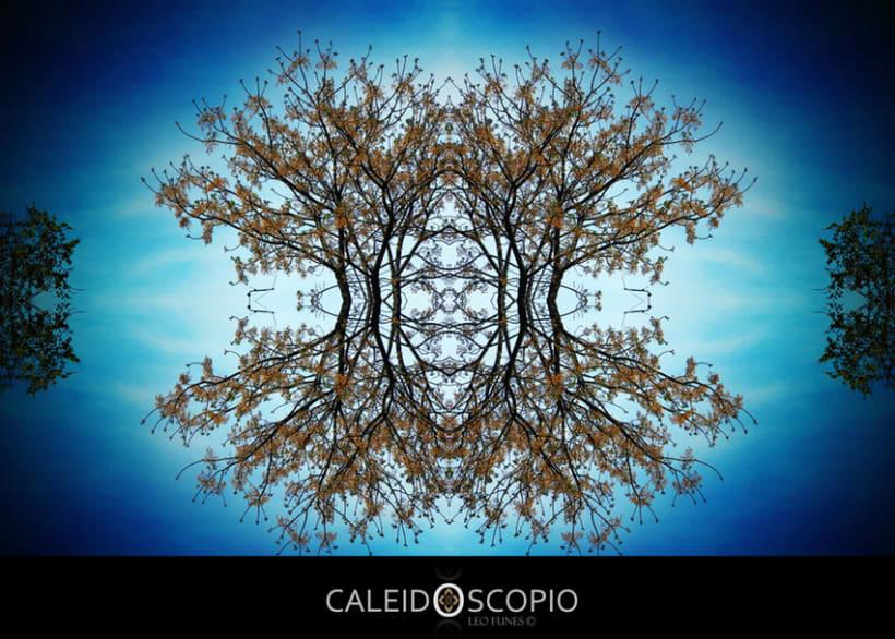 CALEIDOSCOPIO - 4 11