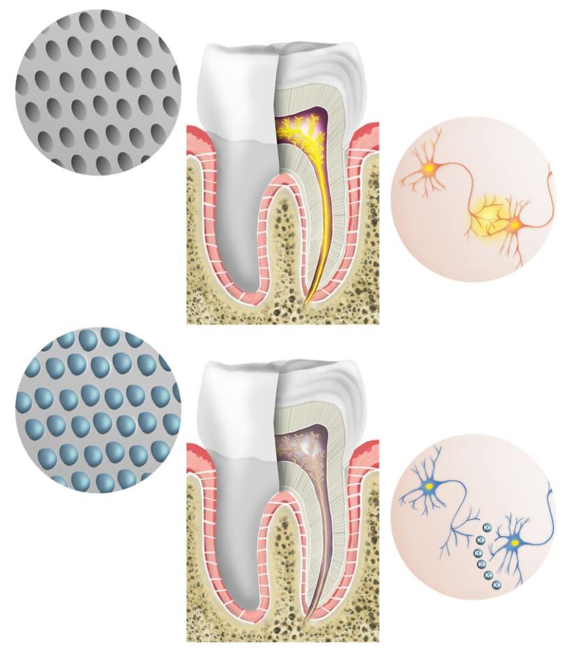 Ilustraciones odontologia 4