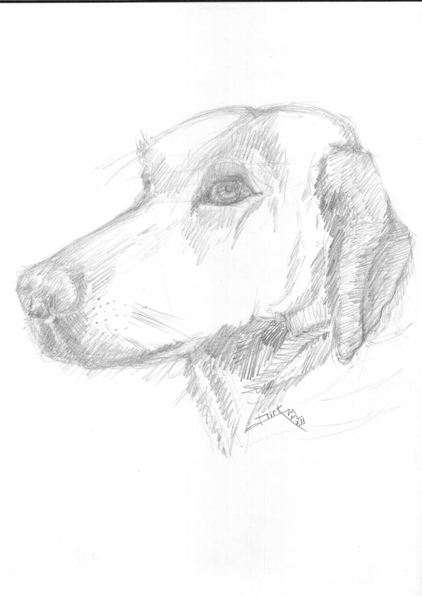 Creando un dibujo  4