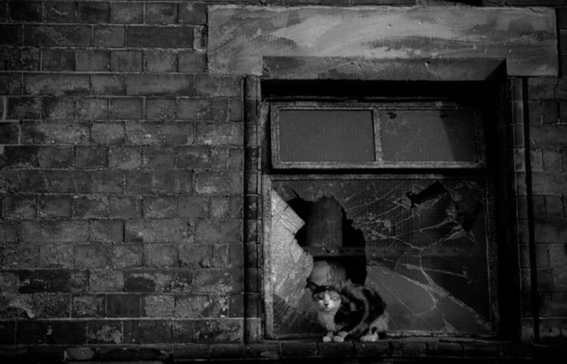 Birmingham Industrial Revolution 7