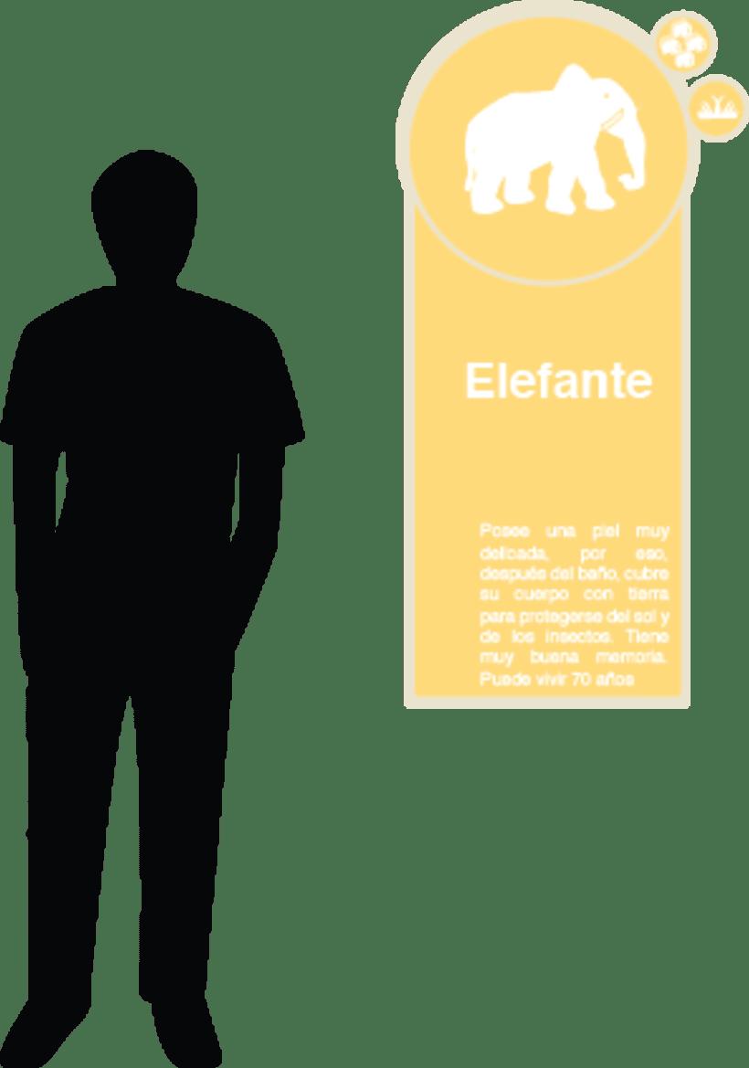 Proyecto Plan Visual 6