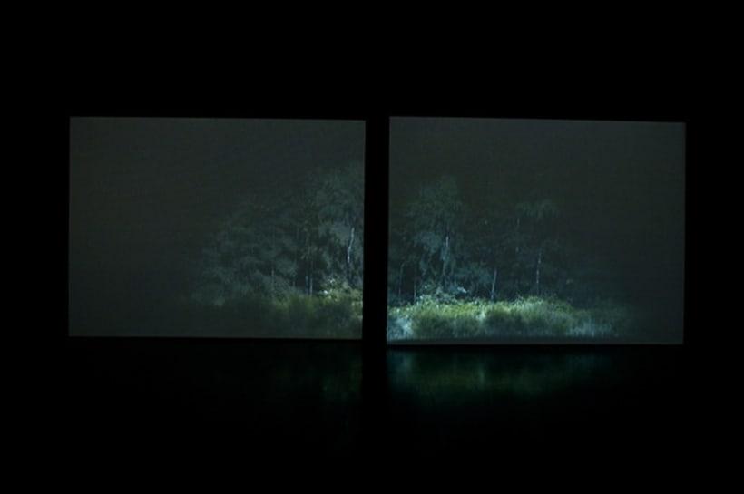 Rodney Graham. A través del bosque 2