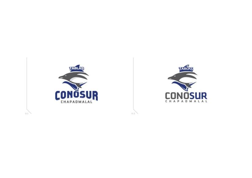 ConoSur_LOGO 2