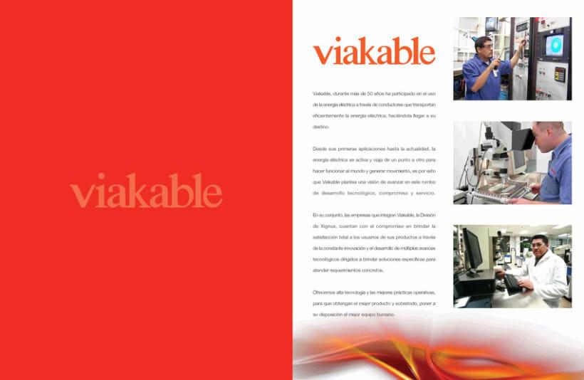 Profile Viakable 2