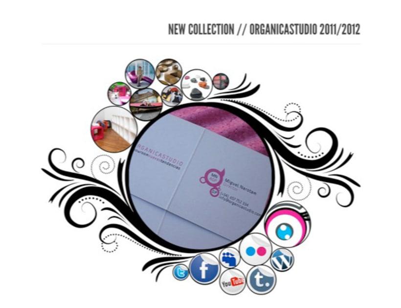 website organicastudio 1