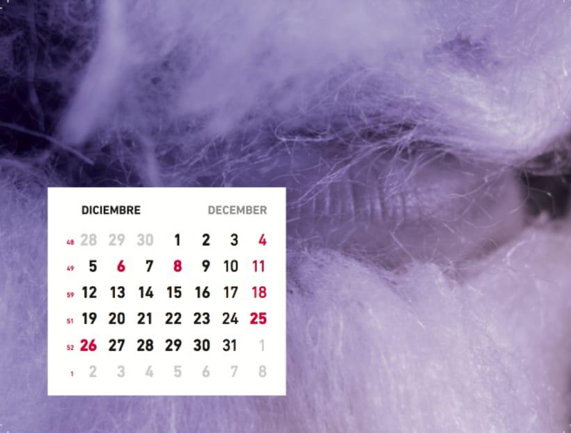Calendario sensaciones 13