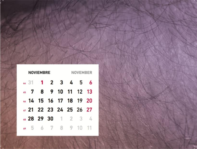 Calendario sensaciones 12
