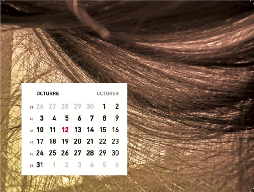 Calendario sensaciones 11