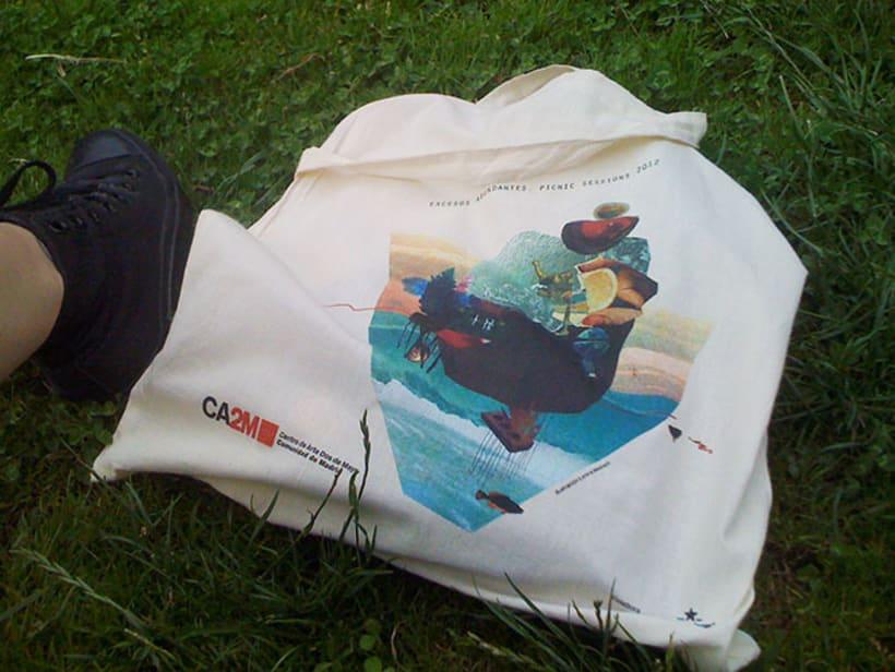 picnic sessions 2012 2