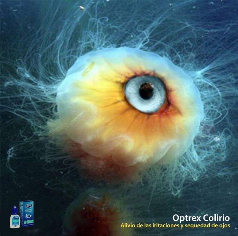 Optrex colirio  1