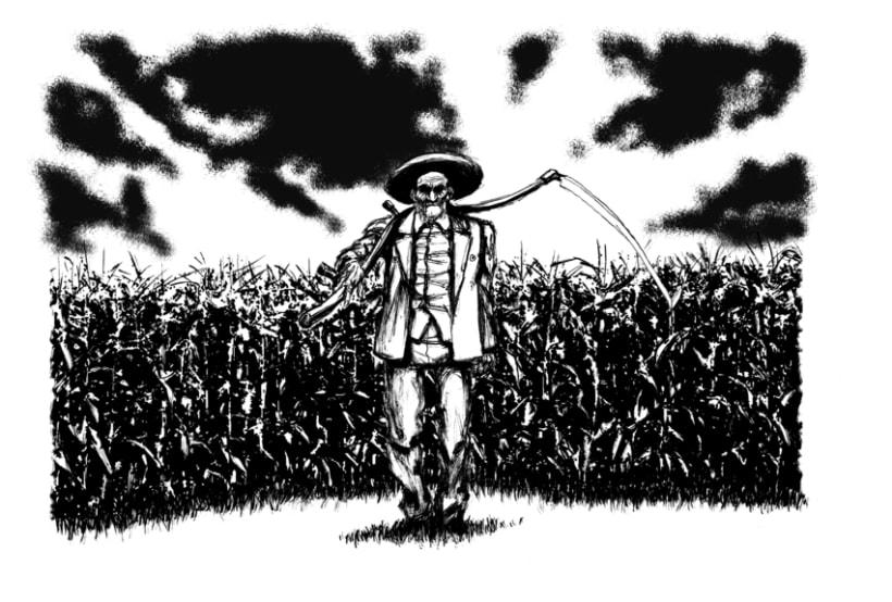 Ilustraciones II 5