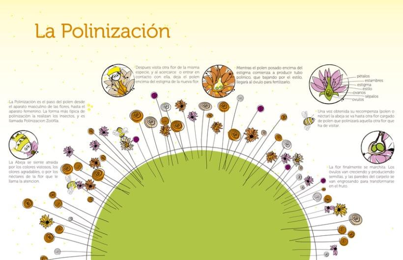 Infografías 5