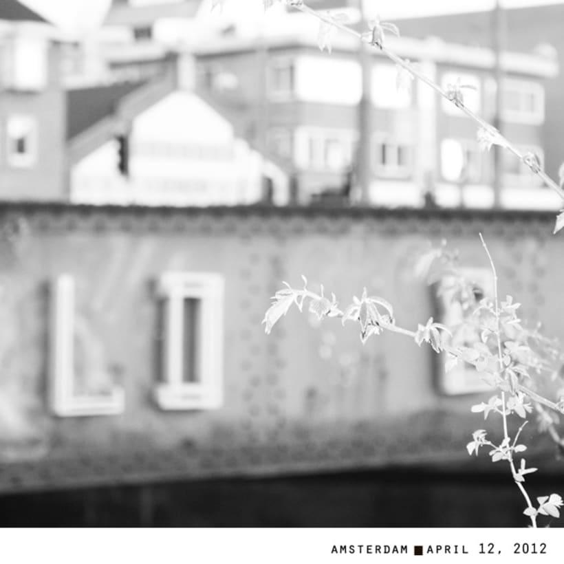 LOVE AMSTERDAM 6