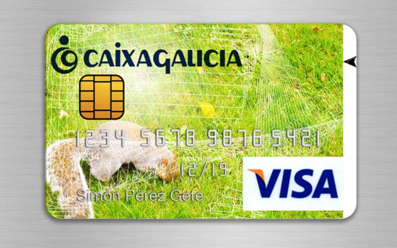 Visa Credit Cards /Spring Summer Edition. 2