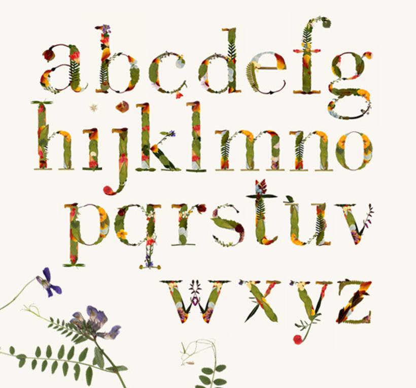 Herbario. Tipografía experimental 4