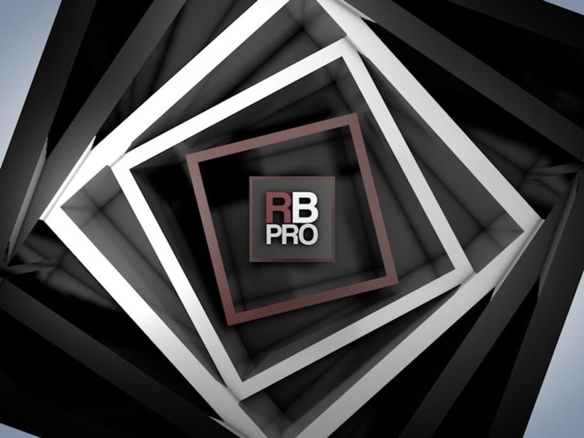 RBPRO 3