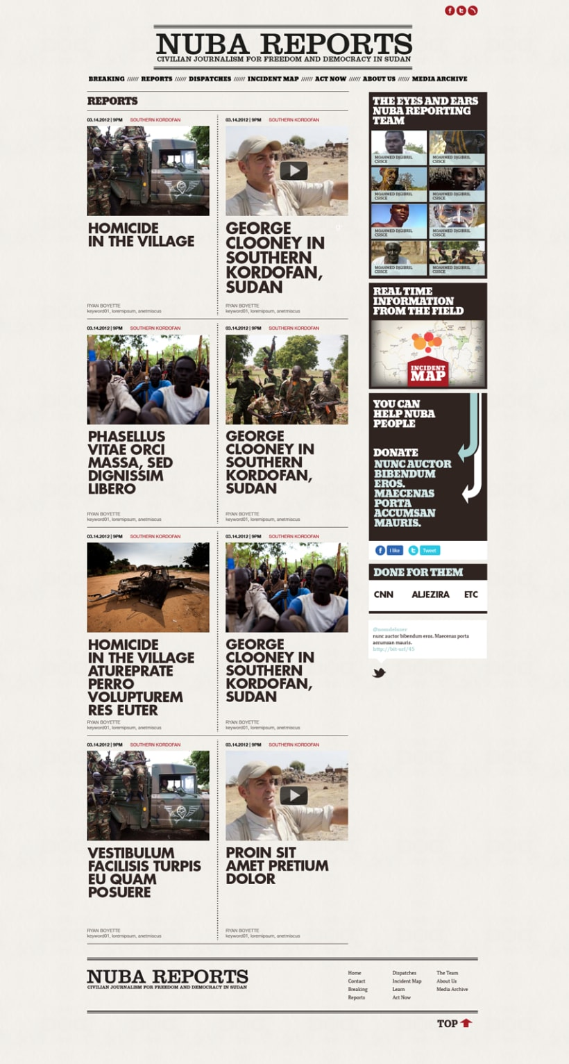 Website Design Nuba Reports 3