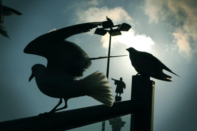 FOTOGRAFIA (SI QUIERESVER MAS: http://josealvarezdg.wixsite.com/jose-alvarez-photo) 1