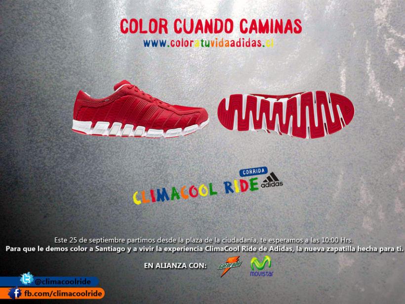 Adidas 8
