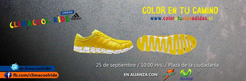 Adidas 13