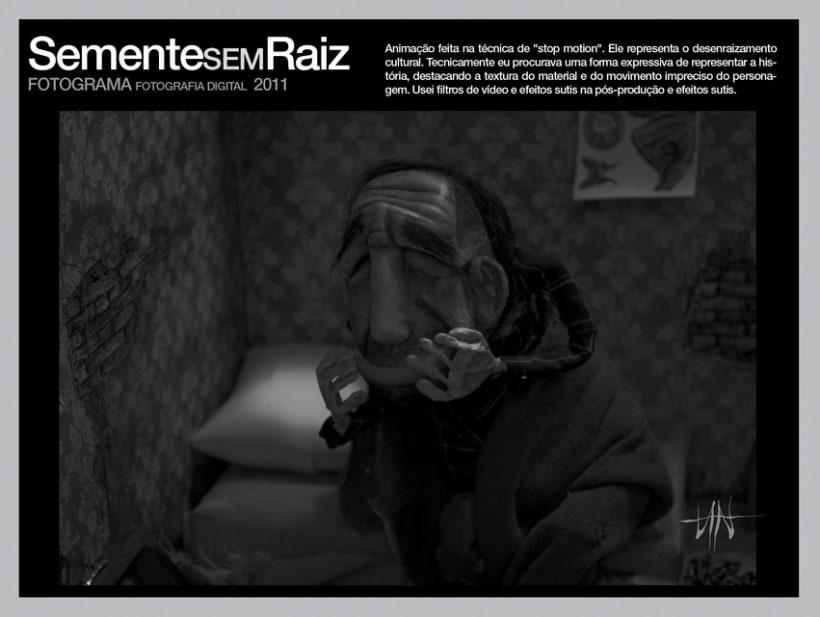 SEMENTEsemRAIZ 7