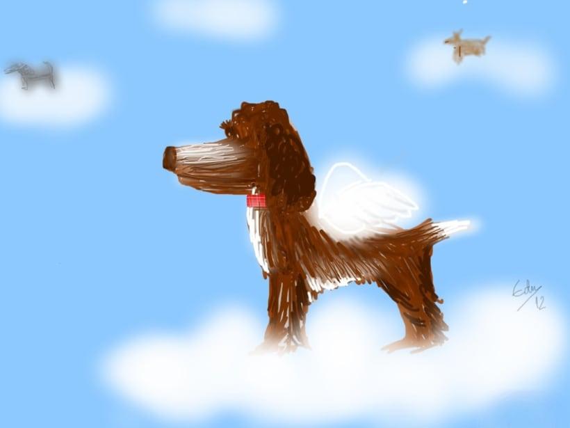 perros 6