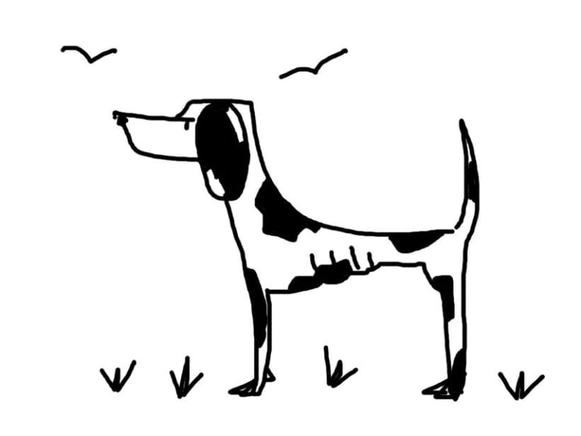 perros 4