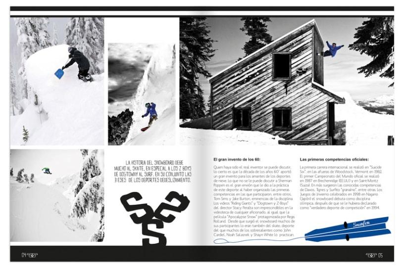 Revista Sneh 13