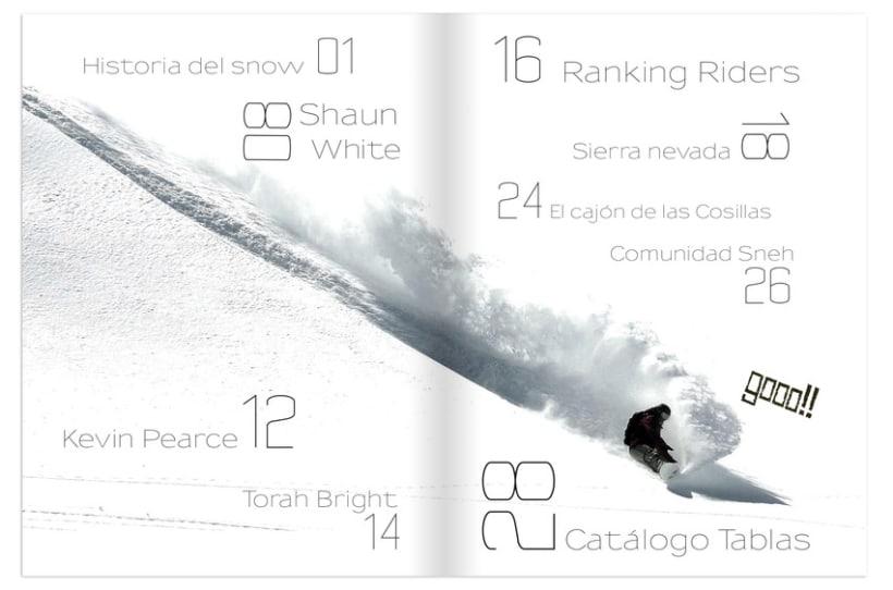 Revista Sneh 11