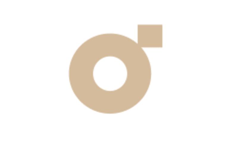 Logotipos 2010-2011 7