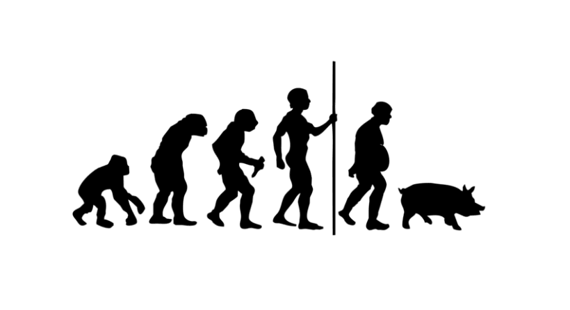 Men-evolution 1