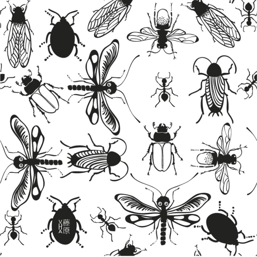 Patterns 11