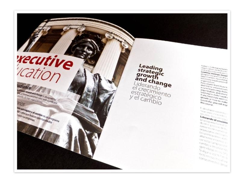 Diseño / Publicidad 3
