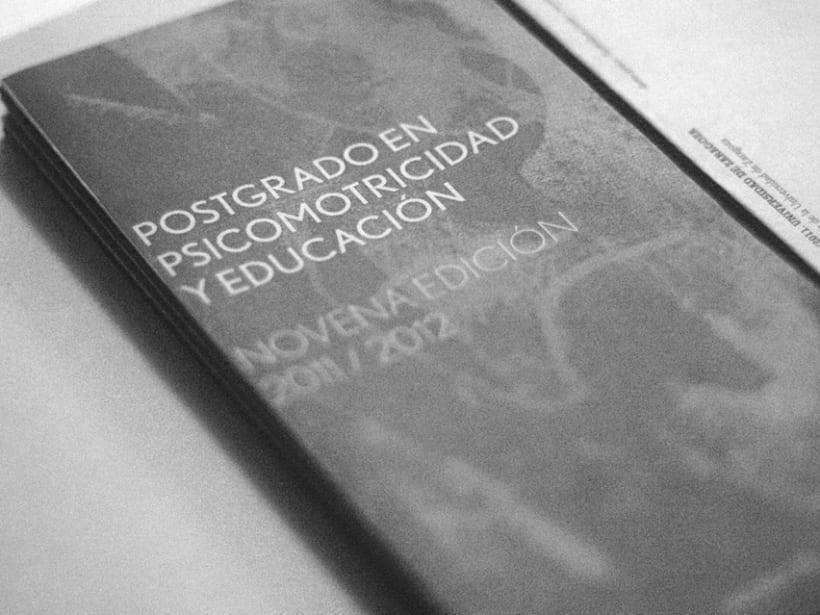 Psicomotricidad y Educación 2011 2