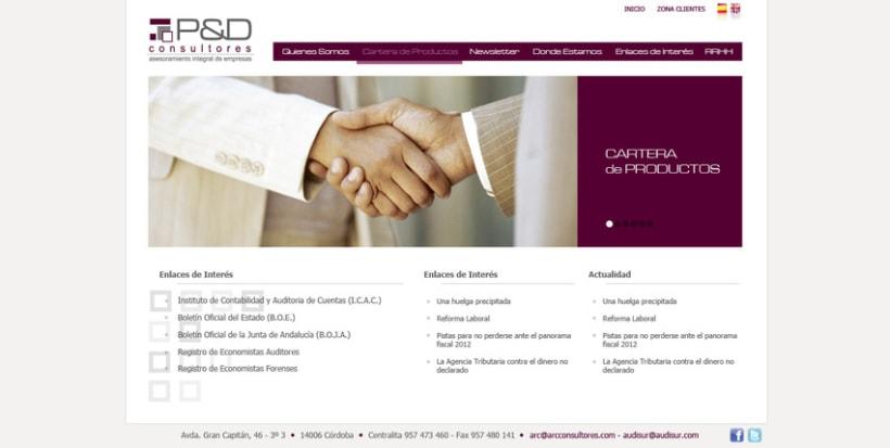 Web P&D consultores 1