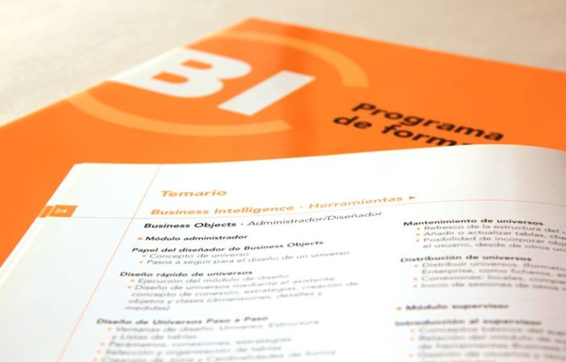 BI Institute 4