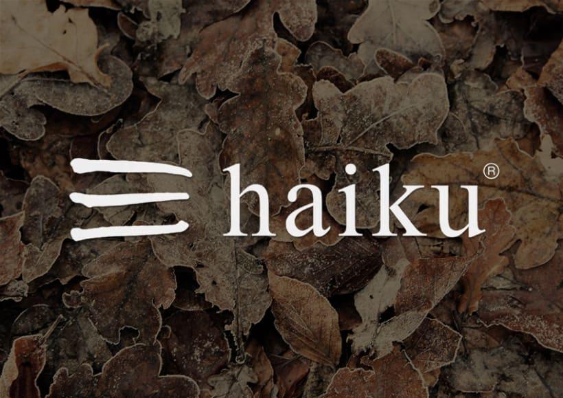 Identidad tienda de regalos Haiku 2