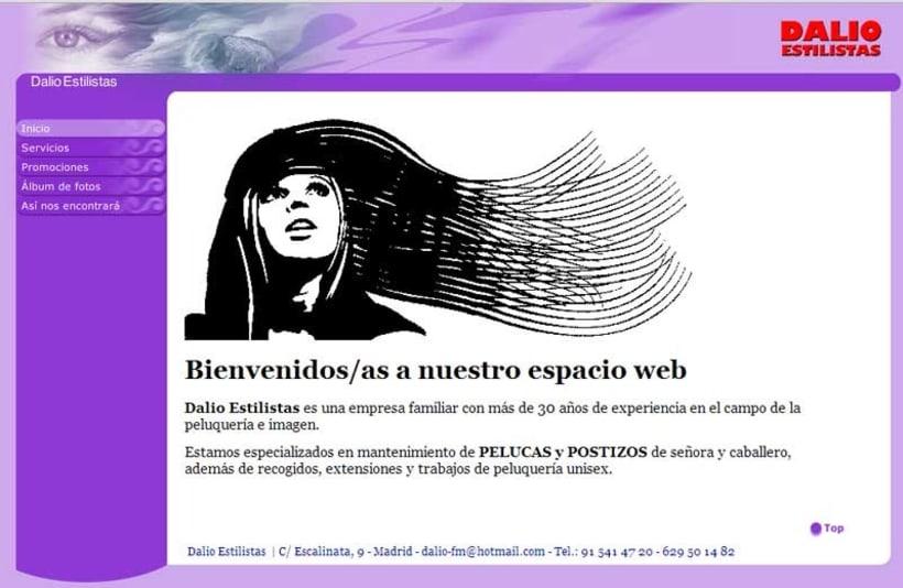 Web de Dalio Estilistas 2