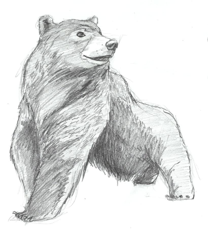 ANIMALS - CHARACTER DESIGN 2012 1