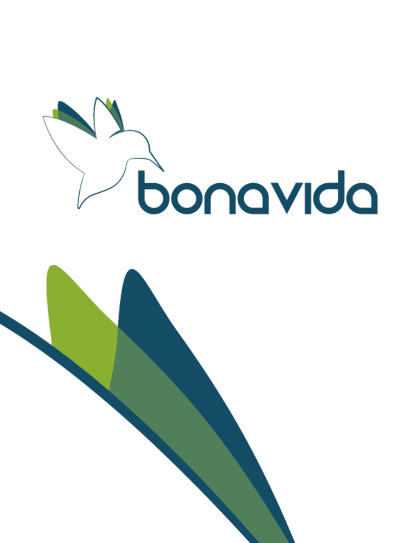 Bonavida 6
