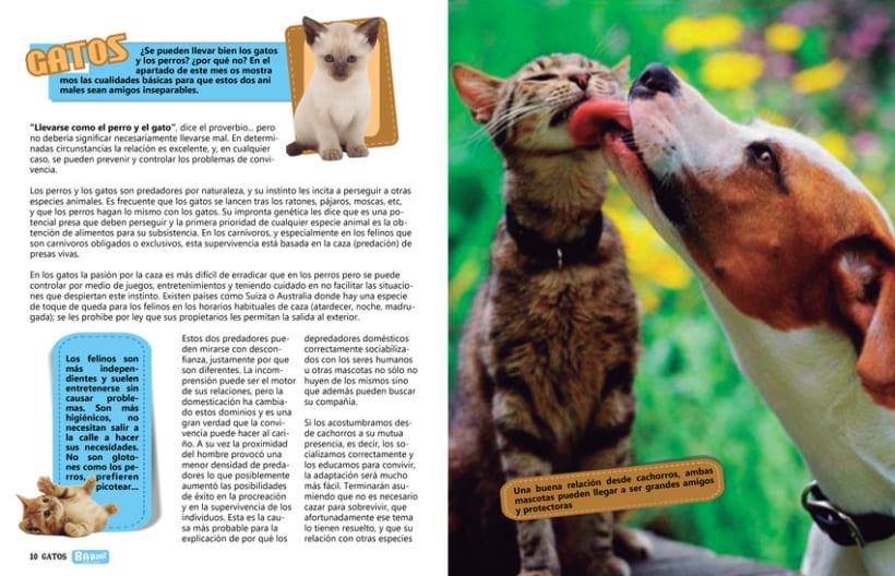 Proyecto revista 6