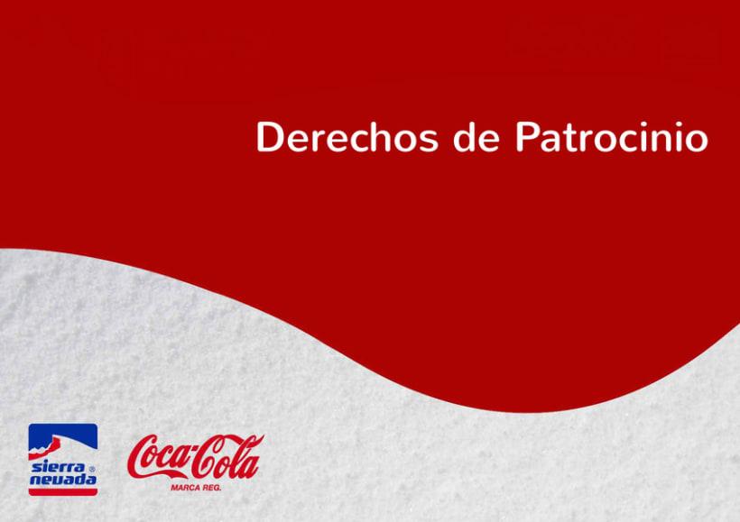 Informe final Coca-Cola 6