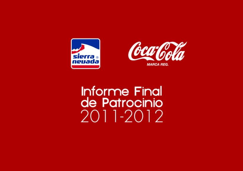 Informe final Coca-Cola 12