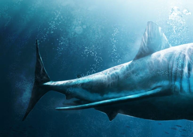 White Shark 3