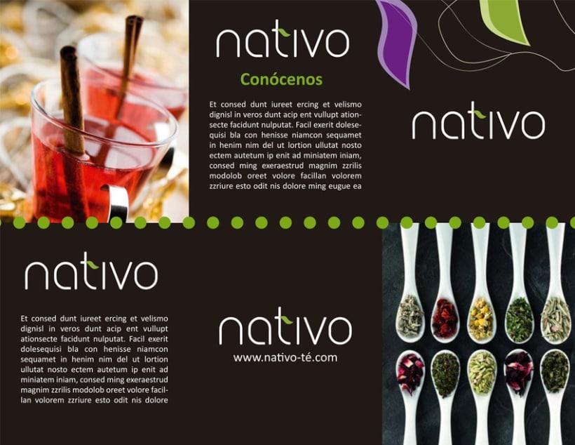 NATIVO BRAND TEA 6