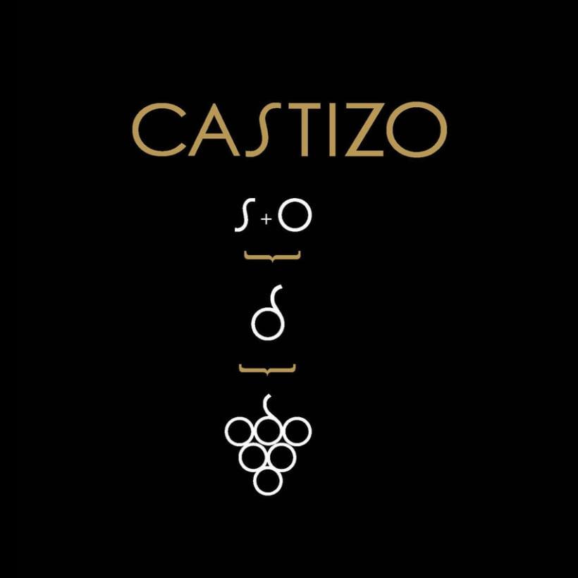 CASTIZO VINOS DE MADRID 7