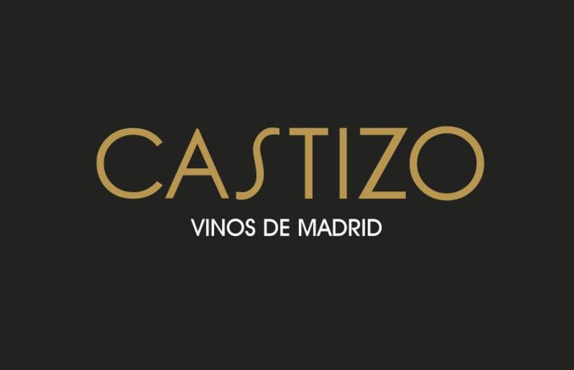 CASTIZO VINOS DE MADRID 1
